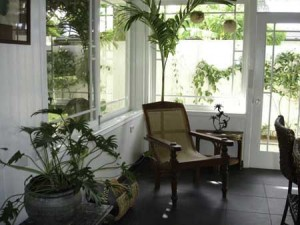 "Staging and Decorating with Live Plants vs. ""Silk"" Plants ..."